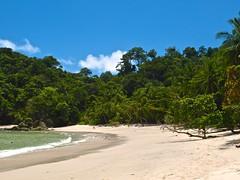 Manuel Antonio 269 (xotico) Tags: naturaleza verde mar costarica natural selva playa animales manuelantonio reserva salvaje xotico xoticosphotos