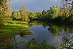 Etang près de Pouilly sur Loire. (jmsatto) Tags: automne sur loire étang loiret valdeloire pouilly inspiringcreativeminds