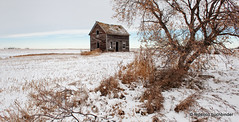 Windmill House (/ shadows and light) Tags: old winter sky house snow cold abandoned clouds rural countryside decay prairie derelict decayed decaying gnarlytrees abandonments pastelcolors ruralexploration pastelcolours rurex southeastsaskatchewan
