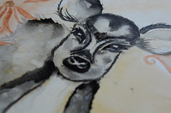 Innocence (Shivo Photography9) Tags: life art beauty animal ink watercolor paint assignment innocence