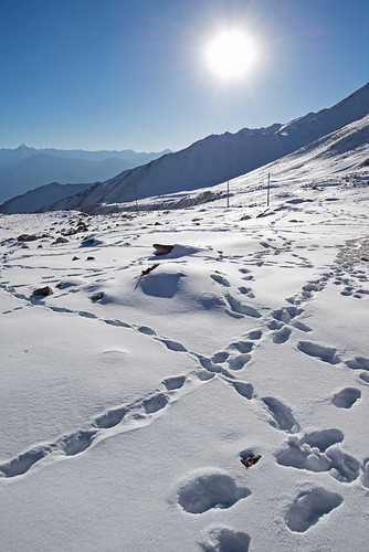 Scenic view of footprints on high snow mountain in ladakh india