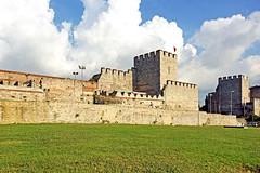 Turkey-03166 (archer10 (Dennis) 78M Views) Tags: wall turkey tour sony free istanbul empire dennis jarvis fortifications byzantine insight constantinople iamcanadian turket freepicture dennisjarvis archer10 dennisgjarvis nex7 18200diiiivc