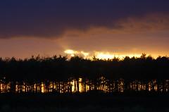 November sunset behind trees (Kirkleyjohn) Tags: light sunset sky luz silhouette clouds atardecer treesilhouette licht countryside suffolk sonnenuntergang lumière pôrdosol lux luce lumen coucherdusoleil свет treessilhouettes φωσ