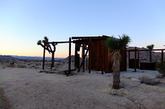 Half Tank (The Cabin On The Road) Tags: joshuatree