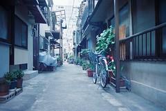 (+aonegi35+) Tags: film japan canon tokyo ae1 program 日本 東京 solaris 月島 路地 キャノン フィルム ソラリス