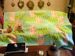 mom's quilt #1 (sassyone2013) Tags: quilt handmade sewing sew quilting blocks quilts