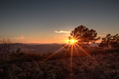 tramonto del sole - HDR (bohnengarten) Tags: italien sunset italy del eos la san italia tramonto sonnenuntergang via pisa toscana sole sunbeam farfalla toskana abendsonne miniato oliven provinz francigena 70d sohnenstrahlen