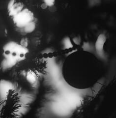 Dark Heart (Kippy!) Tags: christmas blackandwhite bw tree film contrast beads plastic hasselblad fujifilm bristles bauble 80mm fujineopanacros extensivetube