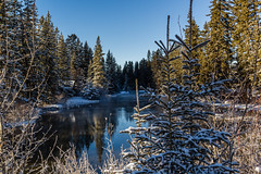 A Creek in Canmore (murph le) Tags: blue trees winter sky snow nature water creek reflections day alberta canmore