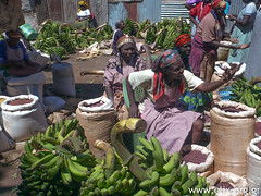 Kenya - CIVS-STV04-2013 UKWALA RURAL DEVELOPMENT CENTRE (UCRDC) - LOUKAIDI Angeliki ( / ELIX) Tags: kenya workcamp 2013  elixconservationvolunteersgreece  civskenya