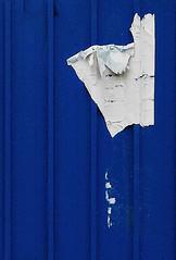 (d'bri) Tags: blue paper torino blu blues carta manifesto