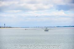 Yaupon Beach (Thank You 7.5 Million Visitors!) Tags: northcarolina atlanticocean shrimpboats oakisland baldheadlighthouse yauponbeach oakislandlighthouse pamelaschreckengost pamschreckcom 2013pamelaschreckengost