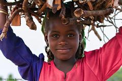 Collecting Firewood (Irene Becker) Tags: africa people girl face village muslim islam portraiture westafrica nigeria firewood kaduna fula blackafrica kadunastate arewa nigria kajuru northernnigeria fulanigirl irenebecker nigerianimages nigerianphotos imagesofnigeria northnigeria irenebeckereu hausaland