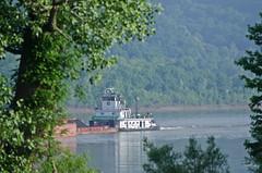 ENID DIBERT (Joe Schneid) Tags: kentucky transportation louisville towboat inlandwaterway inlandwaterways americanwaterways crounse eniddibert ohiorivermile619