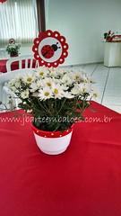 Joaninha (Decorações JB) Tags: decoração joaninha festa enfeites aniversário mesa provençal lembrancinha bolo painel tags personalizados centro de pelucias balões v bexigas balão