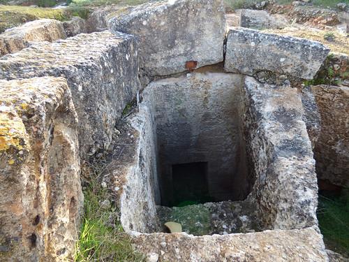 Royal Tombs , Tuzla, cemetery (16)