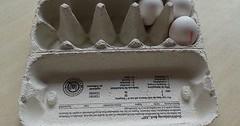 """Der Eierkarton. Die Eierkartons. Die Eierschachtel. Die Eierschachteln. In diesem Eierkarton befinden sich noch 3 Eier. Er ist aus Pappe. • <a style=""""font-size:0.8em;"""" href=""""http://www.flickr.com/photos/42554185@N00/33478039620/"""" target=""""_blank"""">View on Flickr</a>"""