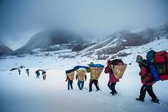 10_MKA1340 (David Ducoin) Tags: nepal mountain snow asia hiking np himalaya porter kangchenjunga taplejung eastnepal ducoindavid tribuducoin
