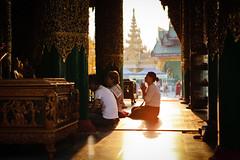 Prayers at Shwedagon Pagoda (Lil [Kristen Elsby]) Tags: travel topf25 temple pagoda asia southeastasia shwedagon yangon burma buddhist topv1111 bama religion buddhism editorial myanmar backlit paya shwedagonpagoda rangoon travelphotography shwedagonpaya myanma shwedagonzedidaw canon5dmarkii myanmar2012