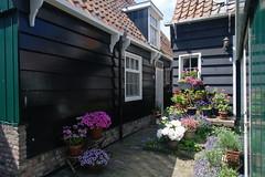 Marken, Buurt (Nik Morris (van Leiden)) Tags: netherlands nederland marken waterland zuiderzee markermeer northholland