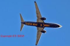Boeing 737-8AS EI-EXF Ryanair (EI-DTG) Tags: dublin ryanair fr b737 boeing737 logojet flightfest eiexf 15sep2013