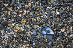 Beach Stones 1