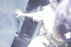 HHN_175 (allen ramlow) Tags: halloween night dark walking dead sony images horror after ghosts hauntings nex7