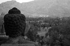 Borobudur Temple (Tempo Dulu) Tags: bw indonesia java stupa buddhism borobudur jogyakarta