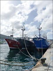 Trio (celicom) Tags: puerto barcos cantabrico tukutuku burela marielak itsaslagunaik