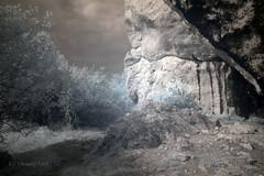 Jura in infrared (ChemiQ81) Tags: ir rocks fuji poland polska polish jura polen limestone infrared jurassic polonia pologne skay  polsko  puola plland lenkija lengyelorszg lengyel pollando   poola poljska polija posko pholainn wapie jurajski  s9600 szlakiem podczerwie      podczerwone chemiq jurajskim polanya lengyelorszgban