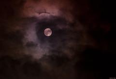 Lunar Veil (markvcr) Tags: light moon clouds twilight veil dusk luna lunar abigfave