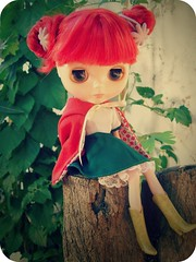 Caperucita Roja- Red Riding Hood