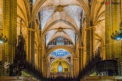 Catedral de Barcelona 3711