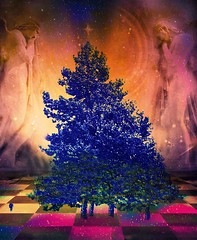 Silent Night (scilit) Tags: christmas trees abstract texture vivid creation angels checkerboard hypothetical firtrees vividimagination artdigital shockofthenew awardtree