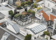 D200_20081027_151355 (martin juen) Tags: vienna wien austria sterreich dom kunst kirche architektur stephansdom turm trme renovierung aut geschichte 27102008 27oktober2008 martinjuen