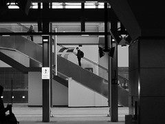 streetTorino2014_IMG_1100_1 (stegdino) Tags: scala stair profile profilo station stazione diagonal line 365the2014edition3652014day2121012014 10100 herowinner gamewinner pinnacle20140217 challengeyouwinner
