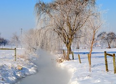 -2 Deg Morning (snooker2009) Tags: winter snow cold ice nature outdoors frost freeze getty dailynaturetnc13