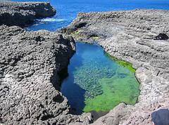 La Piscina (johnfranky_t) Tags: verde del t mare piscina acqua capo sal oceano isola atlantico scogliera johnfranky