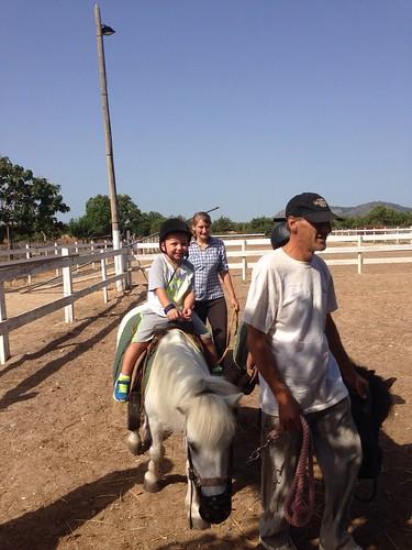 Horses_The Paula Method_1