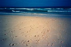 auf dem Weg ins Meer (Ulla M.) Tags: sea beach strand sand meer fuerteventura spuren rangefinder vignette olympusx