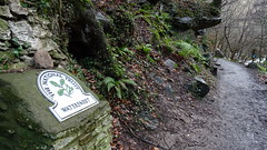 The NT Omega sign at Watersmeet in north Devon (sclarke_pix) Tags: watersmeet nationaltrustomegasign lynmouth northdevon