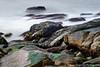 Halibut St. Park (dennisforgione) Tags: ocean water halibutstpark rockportma seascape coastal coast statepark sea longexposure leelittlestopper leepolarizer lee09ndgrad