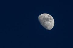 Moon in a blue ocean (In Explore 03/12/2017) (drop_m) Tags: moon night notte dusk crepuscolo canon 70300mm canon70d sky cielo crescent crescentmoon light luce darkness calm calma half halfmoon mezza blue blu turchese turquoise luna oscurità