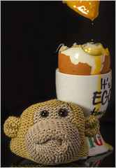 Macro Mondays – Egg (Kev Gregory (General)) Tags: macromondays egg pg tips tea monkey knitted cosy warmer kitchen studio dunk soft boiled soldier bread butter kev young lad diet yolk white yellow dip dipped man time gregory canon 7d macro mondays 100 100mm f28 usm ef challenge theme