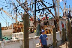 IMG_1890 (Blue Turtle Trawler) Tags: fortmyersbeach shrimpboats sh