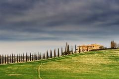 Poggio Covili (Anna Pagnacco) Tags: landscape tuscany italy color cypresses annapagnacco