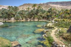 Wadi Bani Khalid (juliamalega) Tags: wadi khalid oman water oasis nature landscape clear