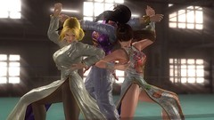 DOA5_Elegancia e inteligencia (Spartan-191) Tags: game 5 games screenshots videogames videogame helena fighting deadoralive doa videojuego kokoro videojuegos leifang bajiquan taichiquan imafighter piguaquan