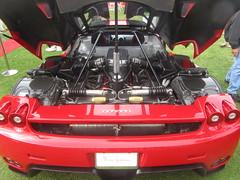 Ferrari Enzo Coupe Engine - 2009 (MR38.) Tags: red engine ferrari enzo 2009 coupe worldcars