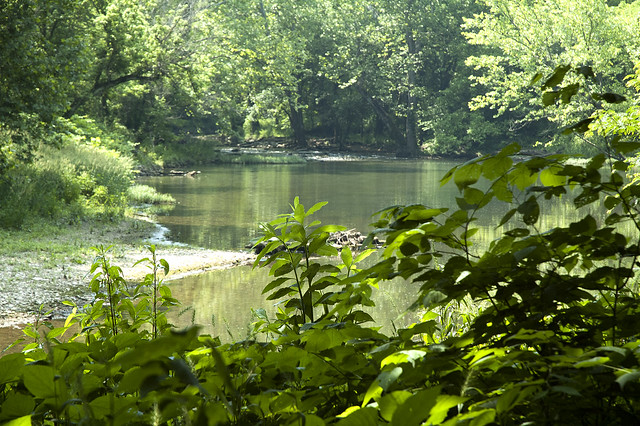 Cedar Bluffs Nature Preserve - Clear Creek - June 2013